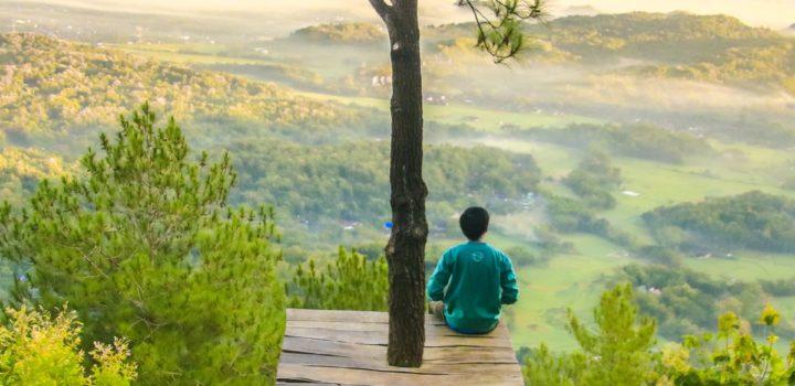 Tweedaagse Ademtraining voor yogadocenten & professionals